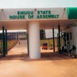 Enugu House Assembly Passes Anti-open Grazing Bill